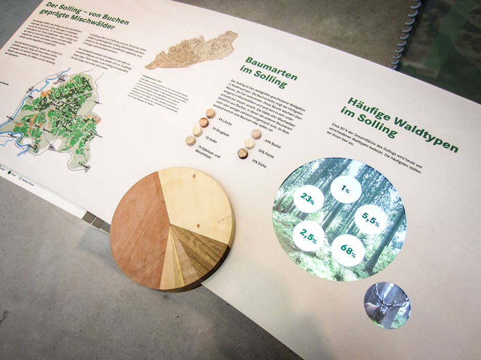 Museumsgestaltung. Vitrine Grafiken zu verschiedenen Baumarten.